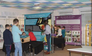 Exposition Sapoll au collège Paul Langevin à Boulogne-sur-mer