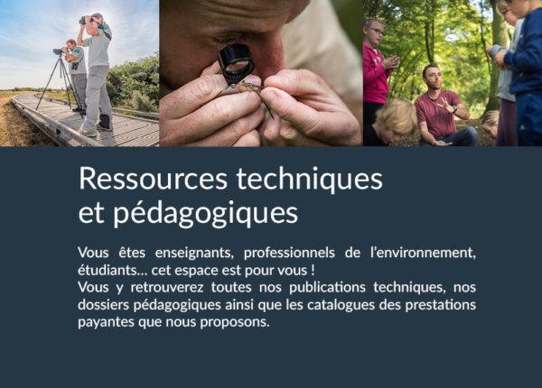 Ressources techniques et pédagogiques