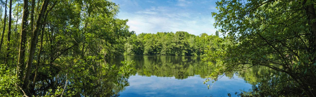 Marais de Biache