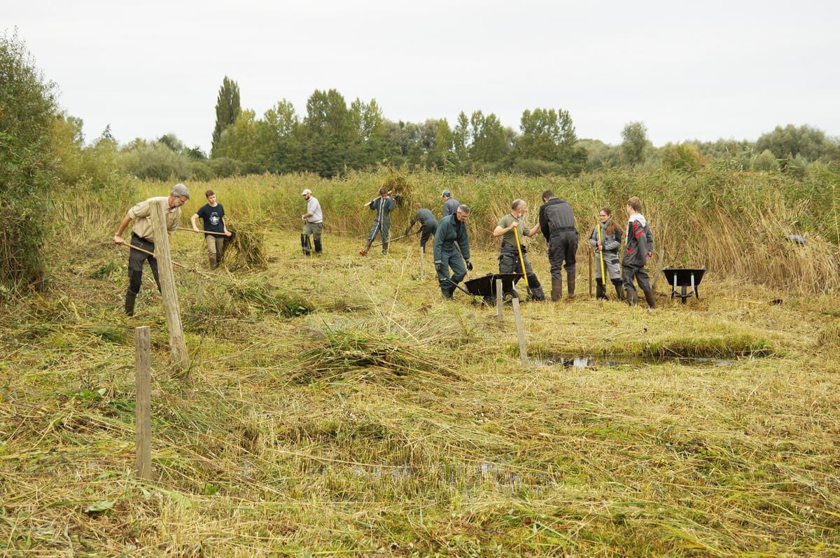Chantier nature avec les terminales STAV du Lycée Agricole d'Hazebrouck