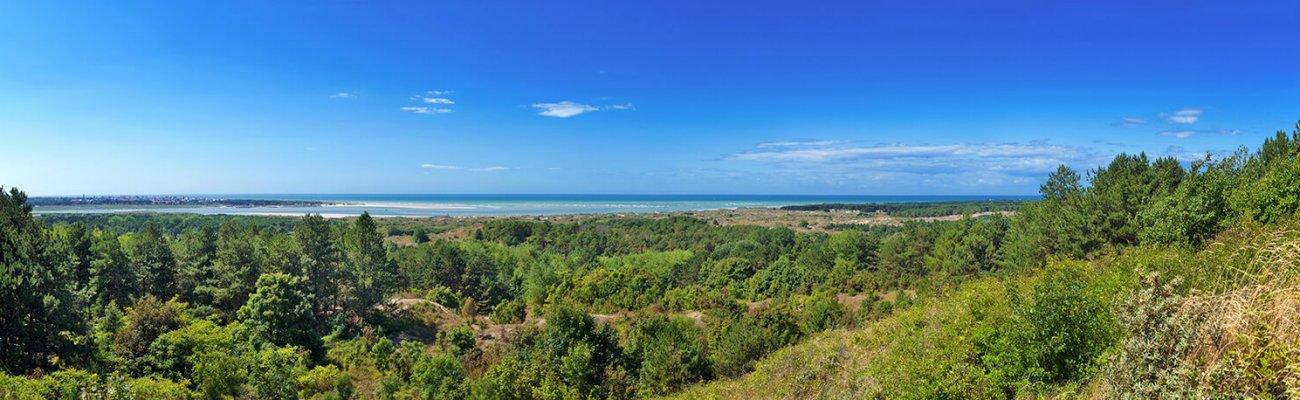 Réserve Naturelle Nationale de Baie de Canche