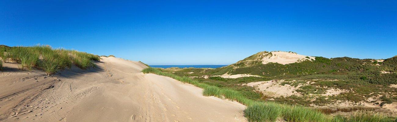 Dunes de Slack