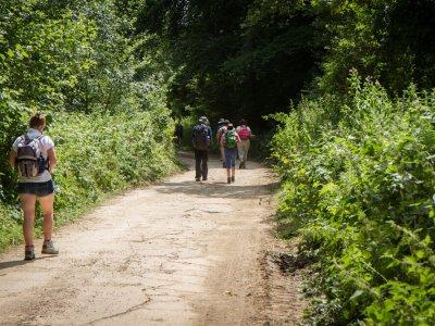 Sentiers à découvrir aux alentours de la RNN des Étangs du Romelaëre