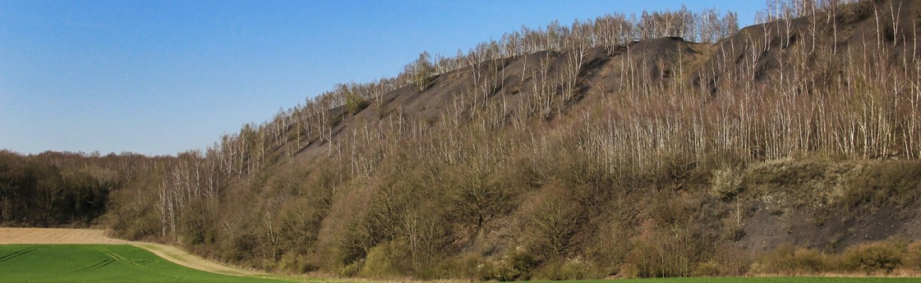 Terril du Pinchonvalles